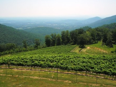 Stone Mountain Winery